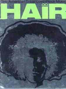 ביקורת המחזמר שיער